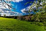 Hatton Walk_1201